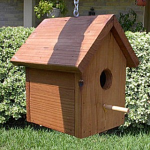 Cedar waxwing bird house plans